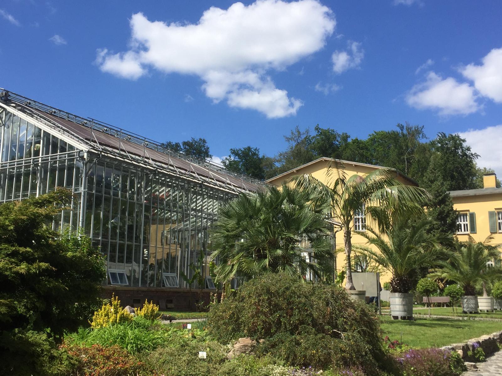 (Post-)Kolonialismus und der botanische Garten in Potsdam