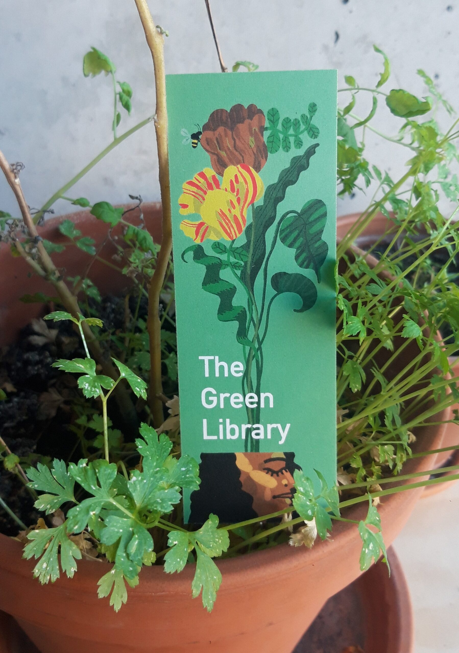 Green Library – a year in review