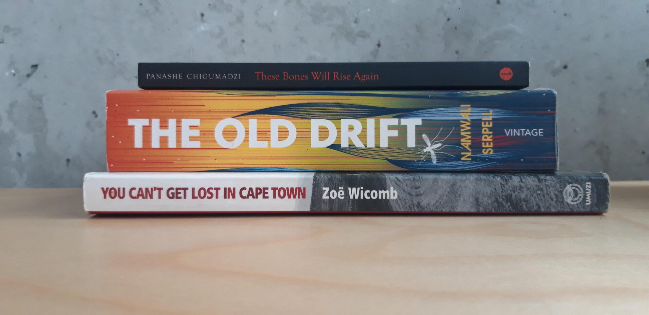 5 lesenswerte Bücher, die im südlichen Afrika spielen