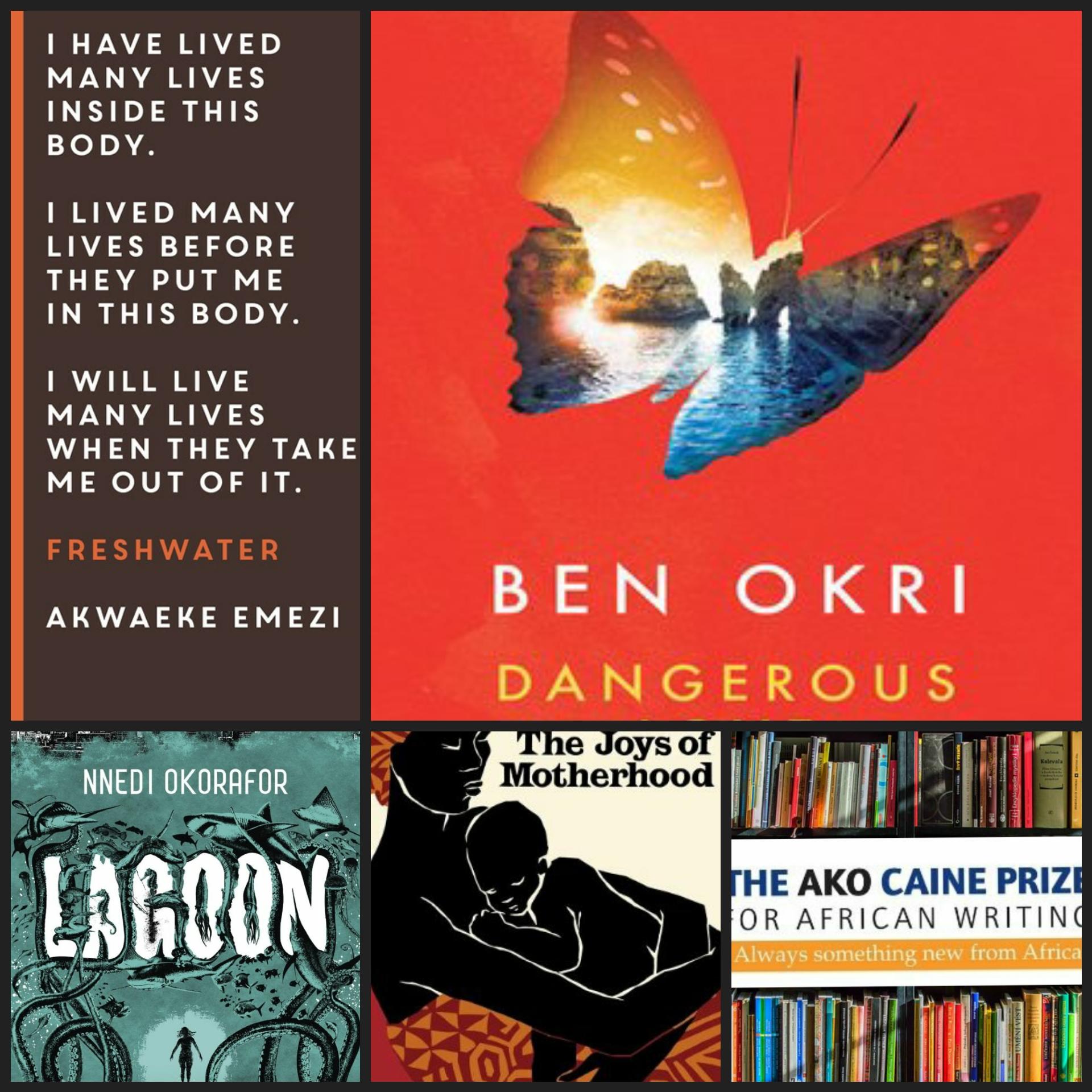 Die 5 besten Bücher mit Schauplatz in Nigeria
